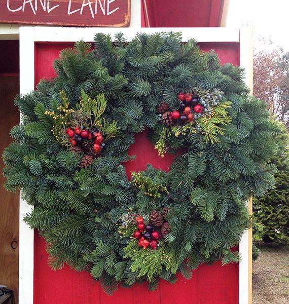 "24"" Round Noble Fir Wreath"